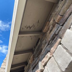 Fascia and soffit repair
