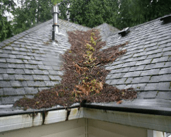 Is your roof ready for fall